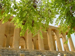 Agrigento – Valley of the Temples